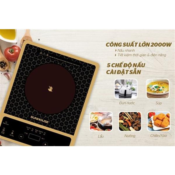bep-hong-ngoai-co-sunhouse-shd6010-4